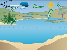 water cycle demo