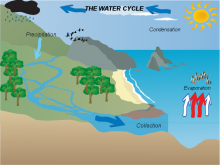 Vaishnavi's Water Cycle