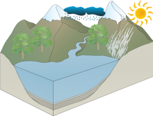 Fin's Water Cycle