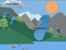 Angela's Water Cycle