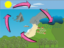 Ejoy's Water Cycle