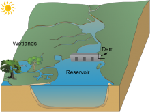 Antonio Donald's dam, reservoir and wetlands