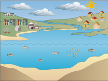 Yassamin's Water Cycle