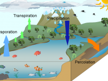 Water Cycle - Jeffrey L Lyneham High