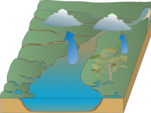 The Amazing Water Cycle By Gary Wang (TAWCBGW)