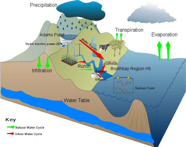 Boothbay Region Natural & Urban Water Cycle