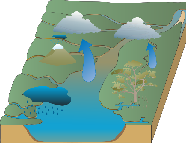 Gary Wang Water Cycle Save Number Two! (GWWCSNT)