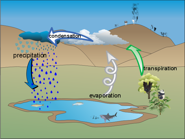 Martin's_water_cycle_diagram