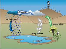 AAMartin's_water_cycle_diagram