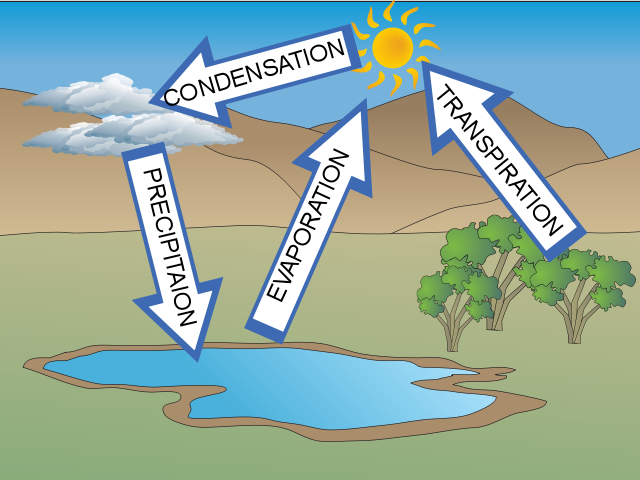 Images of Water Cycle Haris Water Cycle