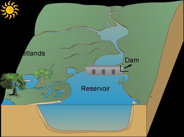 Antonio Donald's dam, reservoir and wetlands | USAUS-H2O