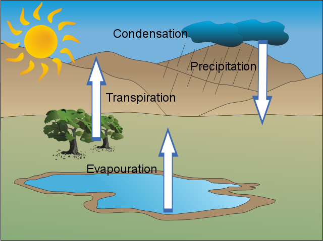 The Water Cycle Usaus H2o