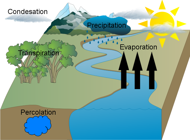Jenny nguyen water cycle final usaus h2o jenny nguyen water cycle final a water cycle diagram water cycle diagram ccuart Image collections